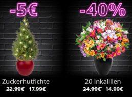 Blume Ideal: Black Friday mit 9 Sträußen ab 14,99 Euro