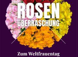Blumeideal: Rosenüberraschung für unter 25 Euro frei Haus