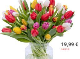 Blumeideal: 44 bunte Tulpen für 24,98 Euro frei Haus