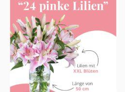 Blumeideal: 24 pinke Lilien mit XXL-Blüten für 24,98 Euro frei Haus