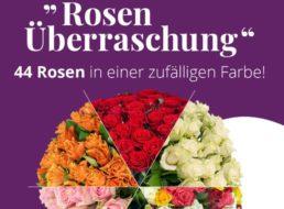 Blumeideal: Rosenüberraschung mit 44 Blumen für 19,99 Euro