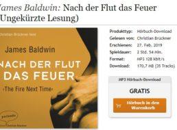 """Gratis: Hörbuch """"Nach der Flut das Feuer"""" zum kostenlosen Download"""