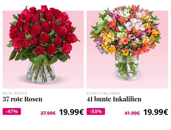 Blumeideal: 37 rote Rosen für 24,98 Euro mit Versand