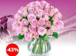 Blumeideal: 35 Rosen in Pink für 24,98 Euro frei Haus