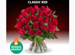 Blumeideal: 37 rote Rosen für 24,98 Euro frei Haus