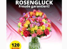 """Blumeideal: """"Rosenglück XXL"""" mit 120 Blüten für 19,99 Euro"""