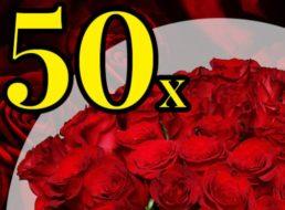Blumeideal: 50 rote Rosen für 27,98 Euro frei Haus