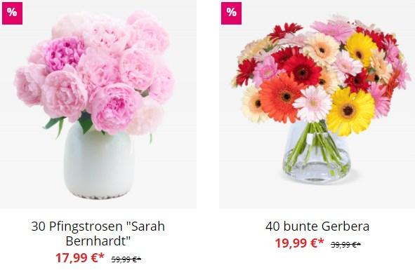 Blumeideal: 30 Pfingstrosen für 23,98 Euro frei Haus