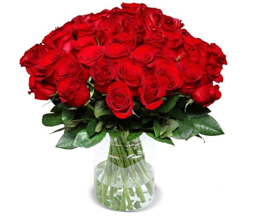 Wieder da: 40 rote Rosen für 19,99 Euro plus Versand