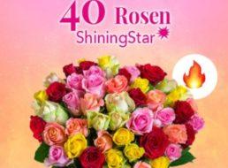 Blumeideal: 40 bunte Rosen für 19,98 Euro mit Versand
