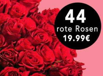 Blume Ideal: 44 rote Rosen für 24,98 Euro frei Haus