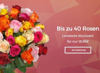 Blume Ideal: Bis zu 40 Rosen für 23,94 Euro frei Haus