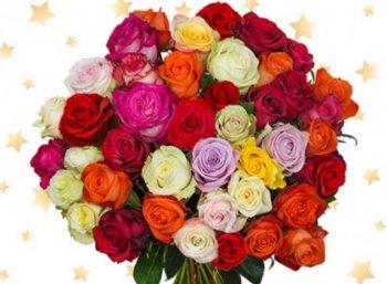 Blumeideal: 39 XMAS-Rosen für 22,94 Euro mit Versand