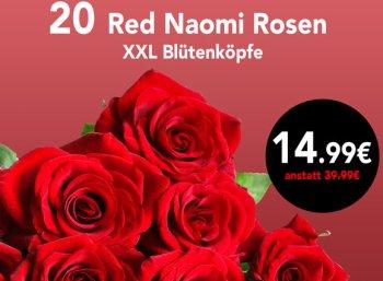 Blumeideal: 20 Rosen mit großem Blütenkopf für 19,98 Euro frei Haus