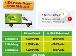 Bringmeister: 20 Euro Rabatt bei 50 Euro Warenwert für Neukunden