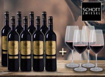 """Weinvorteil: Acht Flaschen prämierter """"Casa Safra"""" & vier Gläser für 34,90 Euro"""