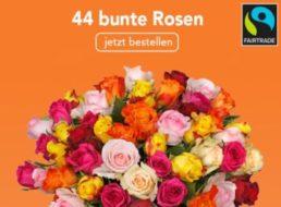Fairtrade: Rosenstrauß mit 44 bunten Blüten für 22,98 Euro frei Haus