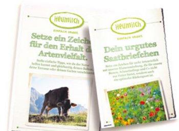 Gratis: Samenbriefchen mit Wildblumenmischung zum Nulltarif frei Haus