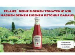 Gratis: Heinz-Tomatensamen zum Nulltarif frei Haus