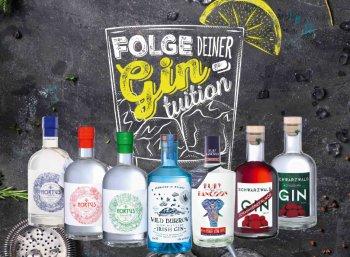 Lidl: Gin-Spezial mit zehn verschiedenen Sorten sowie Zubehör