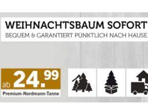 Lidl: Weihnachtsbaum unter 30 Euro mit Lieferung