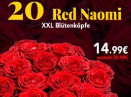 Blumeidal: 20 Rosen Red Naomi für 19,98 Euro mit Versand