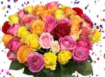 Blumeideal: 31 Rosen zum neuen Jahr für 19,94 Euro mit Lieferung