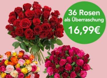 Blumeideal: 36 Rosen mit 50 Zentimeter Länge für 21,94 Euro frei Haus