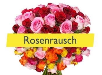 Rosen-Rabatt: 34 langstielige Rosen für 19,94 Euro frei Haus