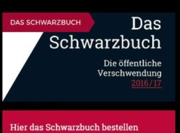 Gratis: Schwarzbuch vom Bund der Steuerzahler zum Nulltarif frei Haus