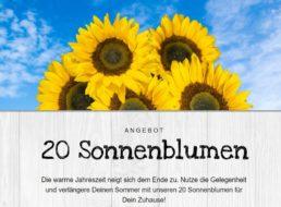 Blumeideal: 20 Sonnenblumen für 22,98 Euro frei Haus