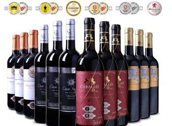 Exclusiv: 12er-Mixpaket goldprämierter Rotwein aus Spanien für 49,99 Euro