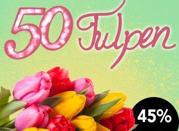 Blumeidal: 50 bunte Tulpen für 24,98 Euro samt Versand