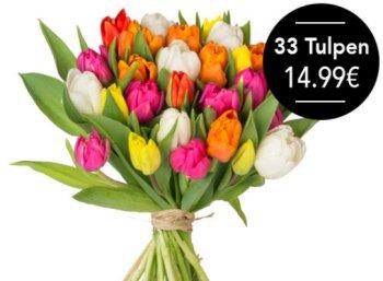 Blumeideal: 33 bunte Tulpen für 19,98 Euro frei Haus
