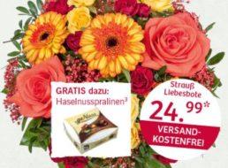 Valentinstag 2016: 20 Prozent Rabatt bei Lidl-Blumen bis Ende Januar