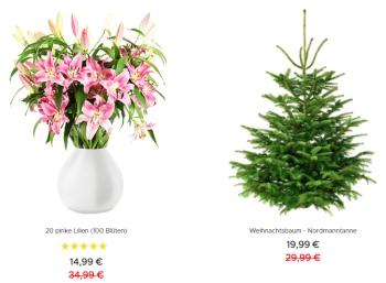 Blumeideal: Weihnachtsbaum für 19,99 Euro plus Versand