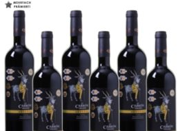 Weinvorteil: Fünffach prämierter Rotwein aus 2009 für 30,96 Euro im Sechserpack
