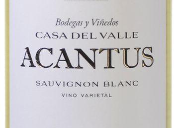 Weinvorteil: Zwölferpaket prämierter Weißwein für 39,99 Euro