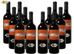 Weinvorteil: Goldprämierter Bodegas Navarro López im 12-Paket für 35 Euro